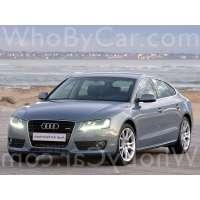 Поколение Audi A5 I лифтбек