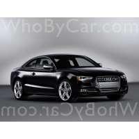 Поколение Audi S5 I купе рестайлинг