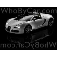 Поколение Bugatti EB 16.4 Veyron тарга