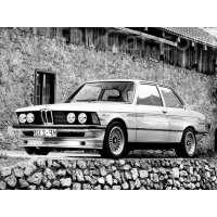 Поколение Alpina B6 E21