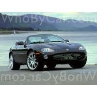 Поколение Jaguar XK I кабриолет