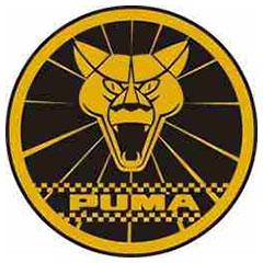Модели автомобилей Puma (Пума)