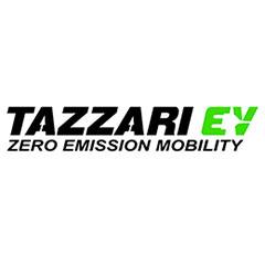 Модели автомобилей Tazzari