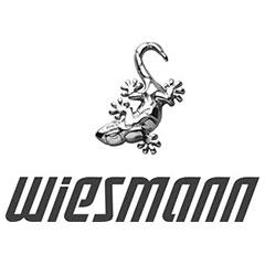 Модели автомобилей Wiesmann