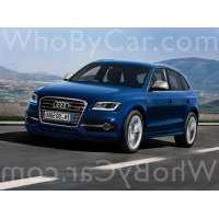 Модель Audi SQ5
